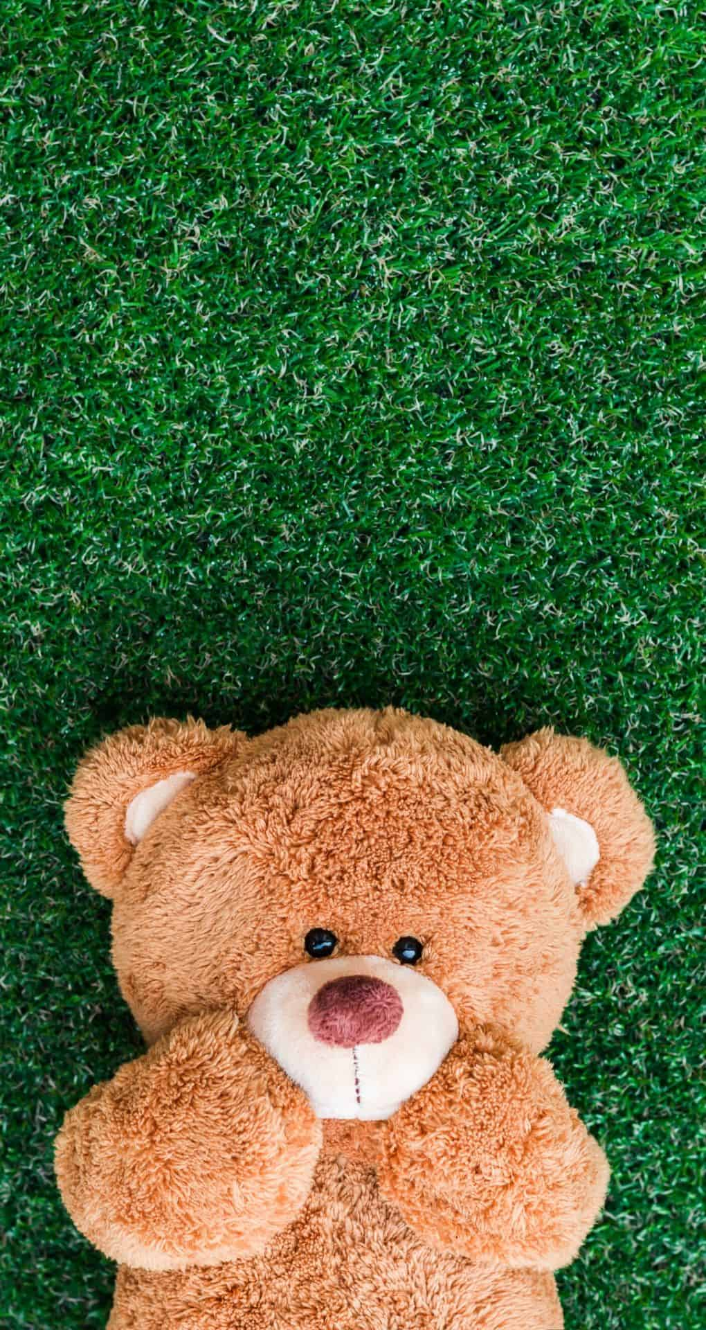 cute iPhone wallpaper with a teddy