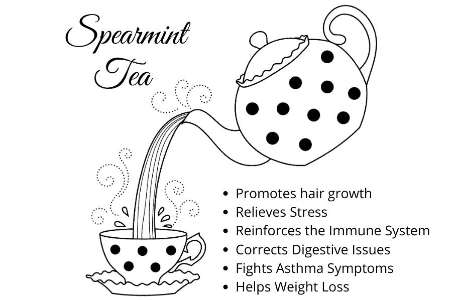 spearmint oil for hair