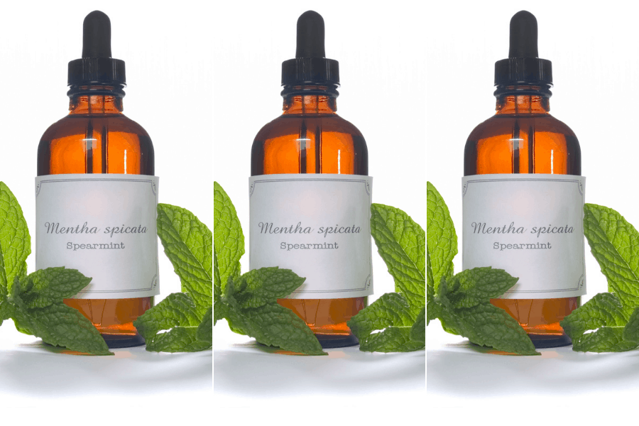The Surprising Benefits of Spearmint Oil for Hair Growth and Health