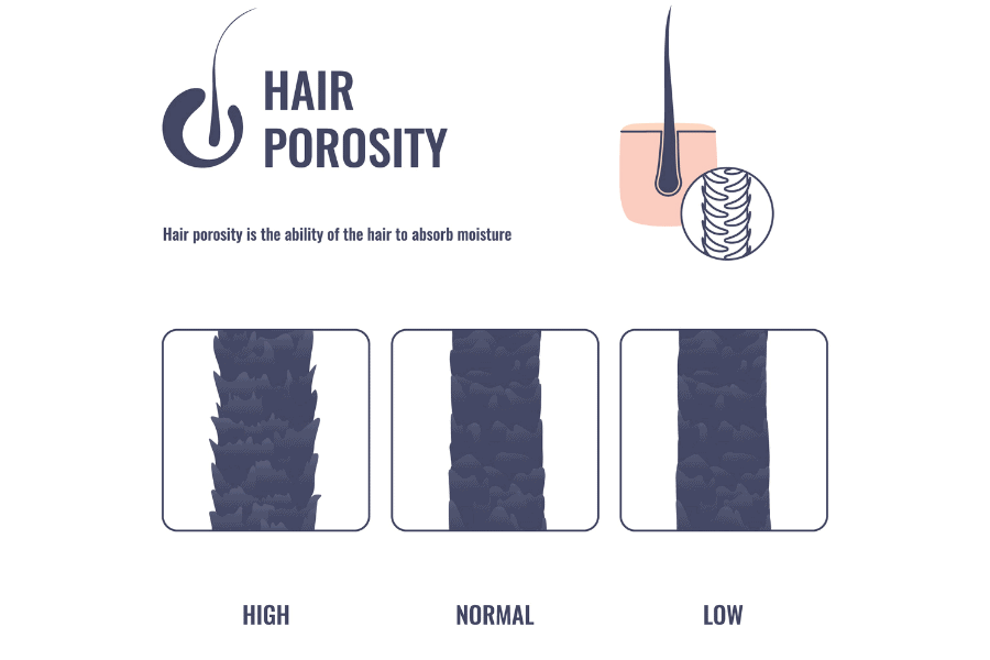 hair porosity test for 2b and 2a curls