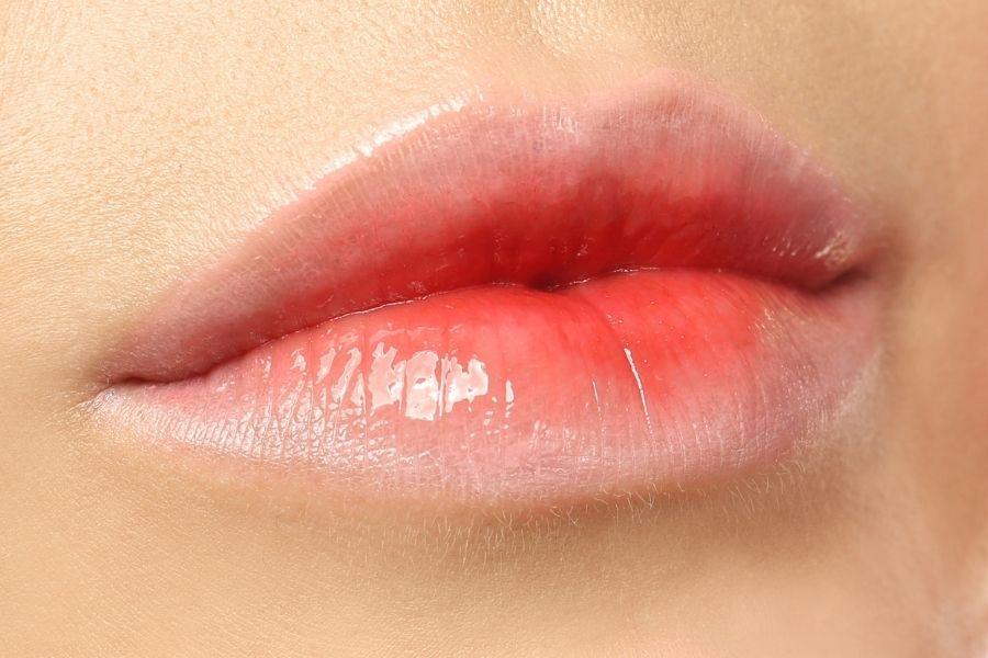 Best Korean Lip Balm