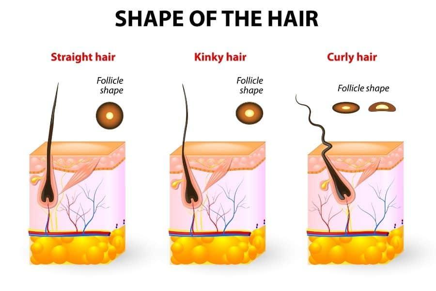 How to Grow Black Hair
